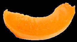 albicocca-3
