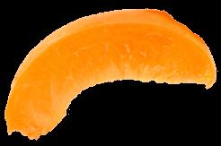 albicocca6