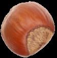 nocciola1